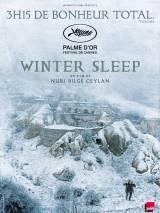 Зимняя спячка / Winter Sleep