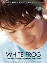 Белая лягушка / White Frog