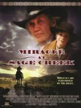 Чудо в Ручье мудреца / Miracle at Sage Creek