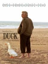 Утка / Duck