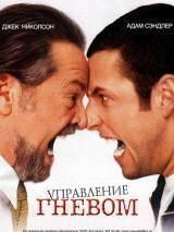 """Постер к фильму """"Управление гневом"""""""