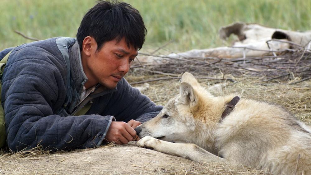 смотреть онлайн в хорошем качестве фильм тотем волка