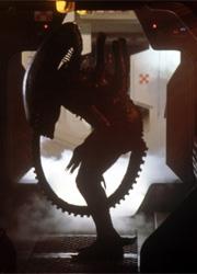 """Ридли Скотт пообещал """"жесткий рейтинг R"""" для сиквела """"Прометея"""""""