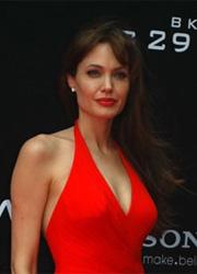 Анджелина Джоли станет университетским профессором