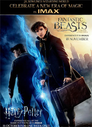 Все фильмы о Гарри Поттере впервые покажут в IMAX