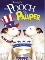 ��� � ����� / The Pooch and the Pauper