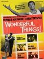 Замечательные вещи! / Wonderful Things!
