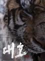 Тигр / Daeho