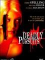 Смертельное преследование / Deadly Pursuits