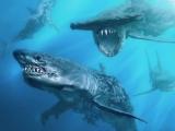 """Кадры к фильму """"Пираты Карибского моря 5: Мертвецы не рассказывают сказки"""""""
