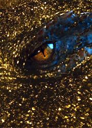 смотреть фильм Подсчитано состояние дракона Смауга