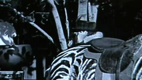 На премьеру фильма Чаплина пришла дама с мобильным телефоном